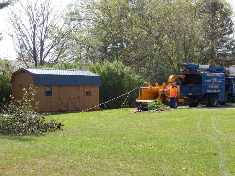 Tree pruning services in Delaware, Ohio by James Tree Service