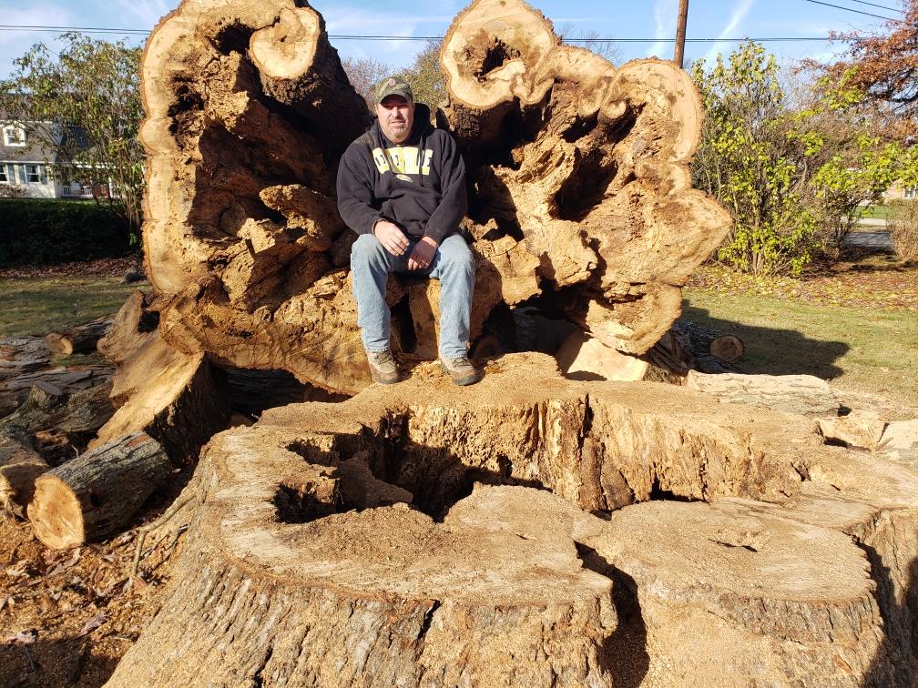james-tree